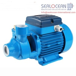 CHINA FACTORY SURFACE PUMP PM, PM SURFACE PUMP FROM CHINA FACTORY, SWIRL PUMP PUMP FROM CHINA, PERIPHERAL PUMPS PM PRODUCTION CHINA, CENTRIFUGAL PUMP PM CHINESE PRODUCTION