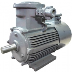 EXPLOSIONPROOF THREE PHASE ASYNCHRONOUS MOTORS WITH FREQUENCY CONTROLLED ROTATION SPEED OF THE YBBP/YBVP2 SERIES
