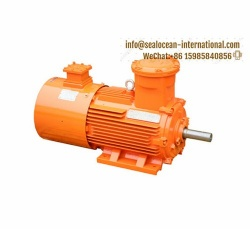 CHINA FACTORY VARIABLE FREQUENCY VARIABLE SPEED EXPLOSION PROOF MOTOR YBPT, CHINA FACTORY  VARIABLE FREQUENCY EXPLOSION PROTECT MOTOR YBBP, YBPT3, YBPT
