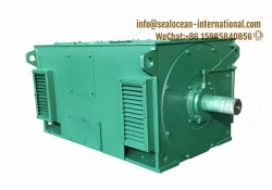 CHINA FACTORY YX ELECTRIC MOTOR, YXKS (WATER COOLED), HIGH VOLTAGE HIGH EFFICIENCY ASYNCHRONOUS ELECTRIC MOTOR 10KV, CHINA FACTORY 10KV HIGH VOLTAGE HIGH EFFICIENCY  HIGH VOLTAGE YX, YXKS (WATER COOLED)
