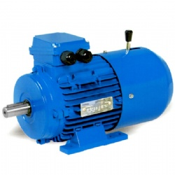 THREE PHASE SYNCHRONOUS BRAKING MOTOR MSEJ SERIES