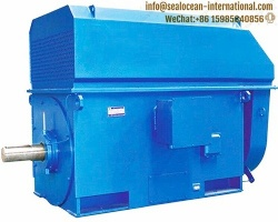 CHINA FACTORY TEAAC HIGH-VOLTAGE ELECTRIC MOTORS TRAVELLING GRATE : HT MOTOR TYPE YKK 4507-4WTH,AIR-TO-AIR COOLING IC611.CHINA FACTORY HIGH-VOLTAGE ELECTRIC MOTORS FOR ( SUGAR,STEEL ,CEMENT,ROLLING MILL) FACTORY,PUMP,FAN,DRUM AND BALL MILL,POWER PLANT