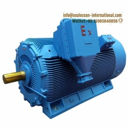 CHINA FACTORY EXPLOSION-PROOF HIGH-VOLTAGE ELECTRIC MOTOR YB, ExdI IBT4, ExdIICT4 Gb, IP65, IP55 SUITABLE FOR COAL, OIL AND GAS, CHEMICAL